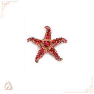 اکسسوری زیوریاب-سنجاق سینه ستاره